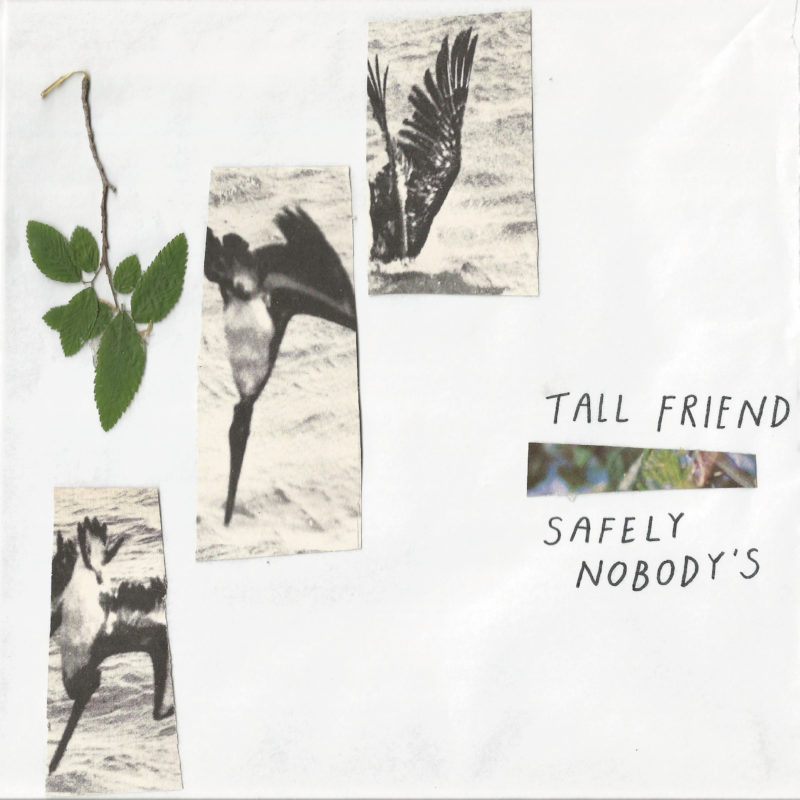Tall Friend | Safely Nobody's | 3hive.com