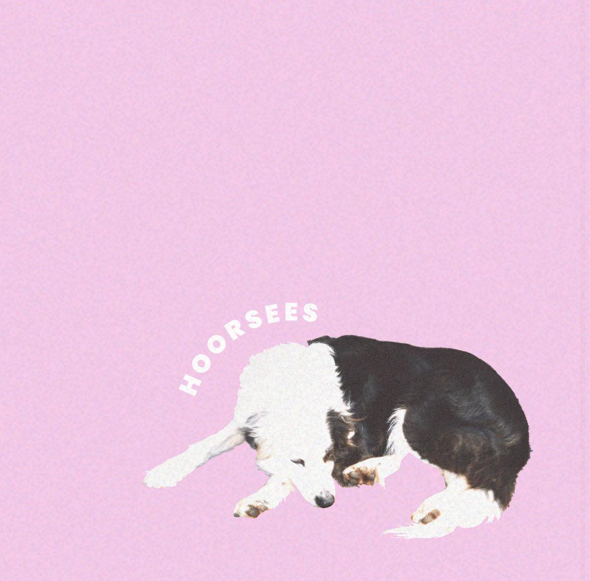 Hoorsees | Hoorsees | 3hive.com